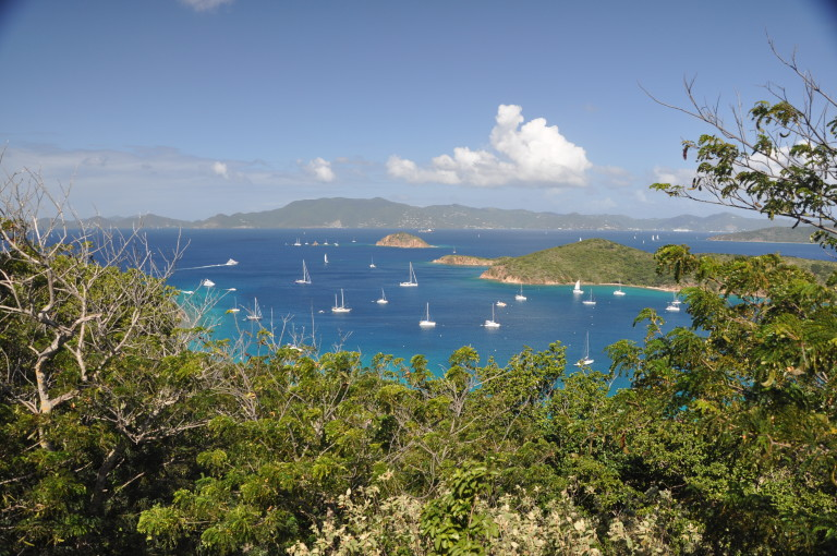 BVI Wrap Up